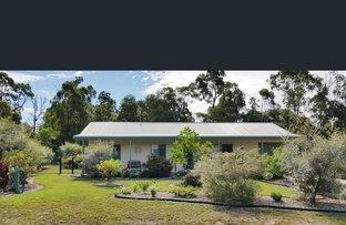 Picture of 8 Edmondson Close, Cardwell QLD 4849