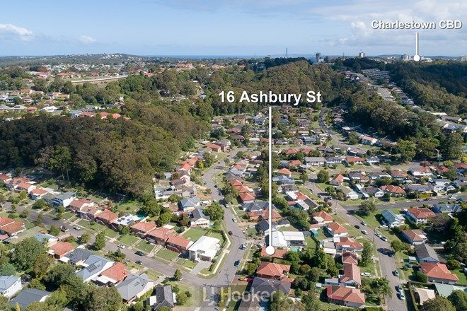 Picture of 16 Ashbury Street, ADAMSTOWN HEIGHTS NSW 2289