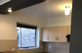 Picture of 14/388 Carrington Street, Adelaide SA 5000