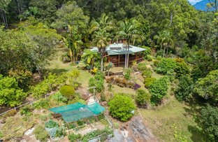 Picture of 665 Byrrill Creek Road, Byrrill Creek NSW 2484