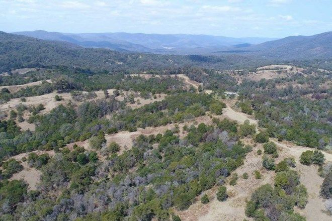 Picture of - MACLEODS CREEK STATION, DRAKE NSW 2469