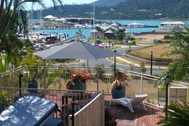 Picture of AIRLIE BEACH QLD 4802