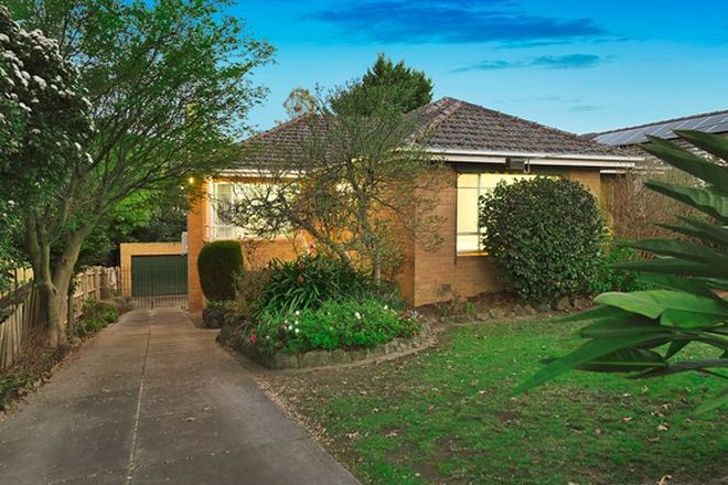 Picture of 36 Ursa Street, BALWYN NORTH VIC 3104