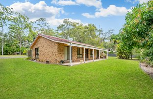 Picture of 11 Hamilton Close, Mooloolah Valley QLD 4553