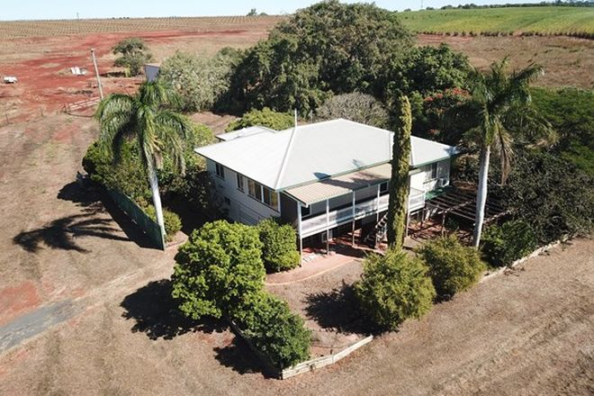 Picture of 22 South Isis Road, SOUTH ISIS QLD 4660