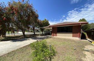 Picture of 3 Oval Avenue, Ridgehaven SA 5097