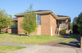 Picture of 50 Song Street, Narre Warren VIC 3805