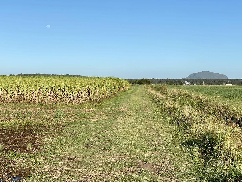 120 Dynes Road, Yandina Creek QLD 4561, Image 1