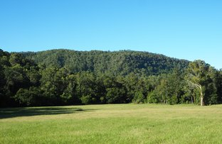 Picture of 387 Roseberry Creek Road, Kyogle NSW 2474