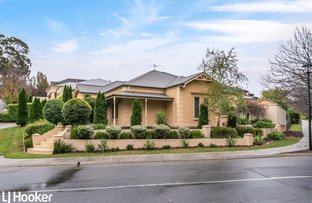 Picture of 1 Harvard Place, Golden Grove SA 5125