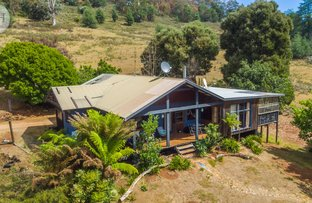 Picture of 31 Banks Road, Derby TAS 7264
