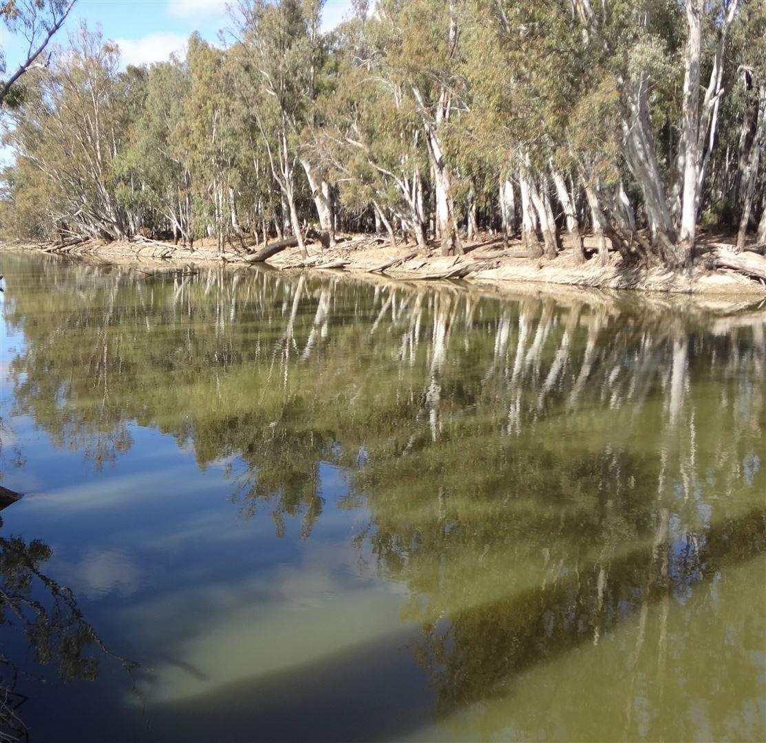 . Morago West & Eastwood, Deniliquin NSW 2710, Image 1