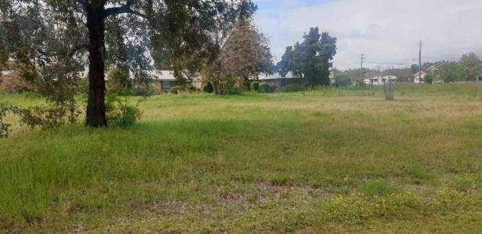 12 Balfour St, Culcairn NSW 2660, Image 1
