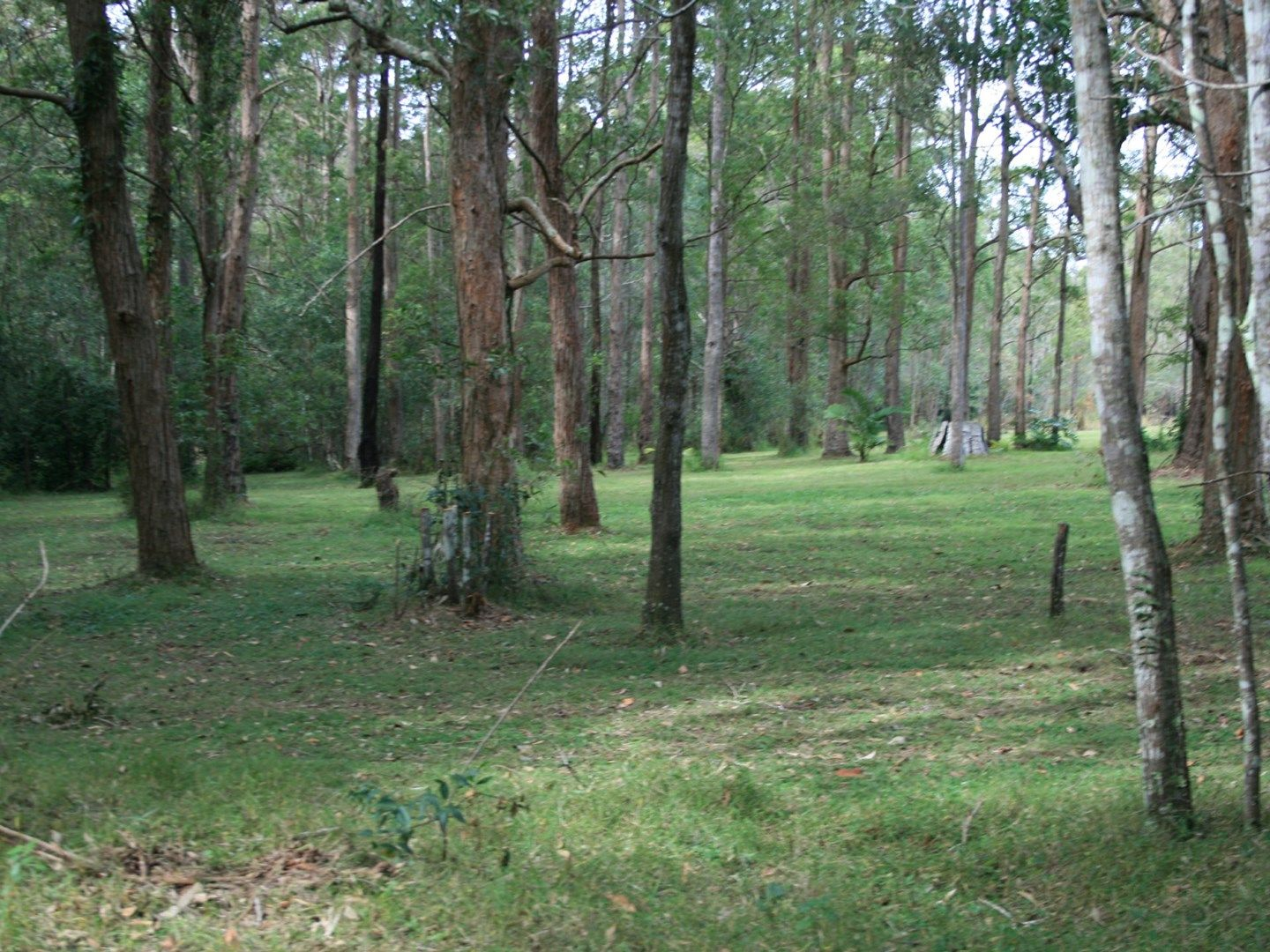 Lot 3 Whites Road, Woodburn NSW 2472, Image 0