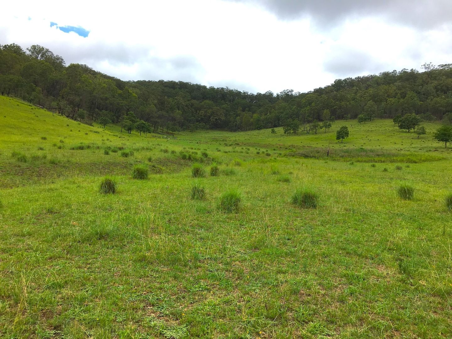 Lot 102 Putty Road, Howes Valley NSW 2330, Image 0