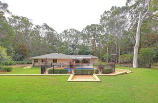 Picture of 14 Pannosa Ct, Capalaba QLD 4157