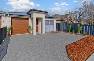 Picture of 13 Hardy Avenue, Glengowrie SA 5044