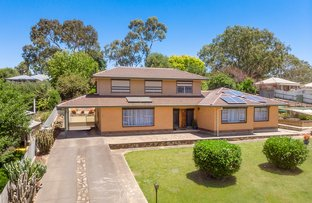 Picture of 7 Allargue St, Nairne SA 5252