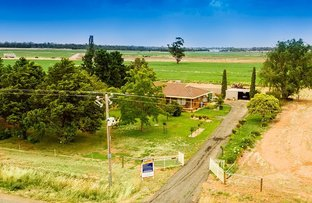 Picture of 116 Black Culvert Road, Rochester VIC 3561