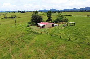 Picture of 2522 PALMERSTON HIGHWAY, East Palmerston QLD 4860