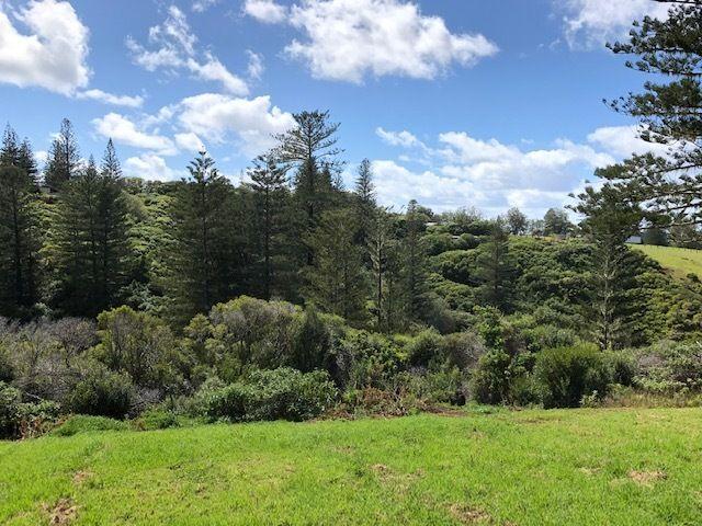 89a Bumboras Road, Norfolk Island NSW 2899, Image 1