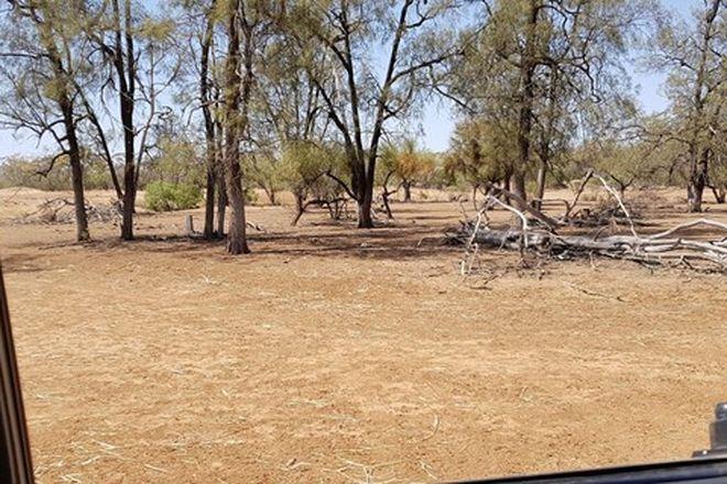 Picture of 1691 Gundabloui Road, COLLARENEBRI NSW 2833