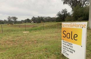 Picture of Lots 184 & 185 Cowra Street, Koorawatha NSW 2807
