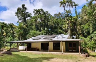 Picture of 137 Turpentine Road, Daintree QLD 4873
