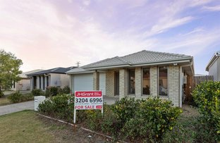 Picture of 33 Champion Crescent, Griffin QLD 4503