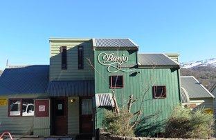 6 Banjo Drive, Thredbo Village NSW 2625