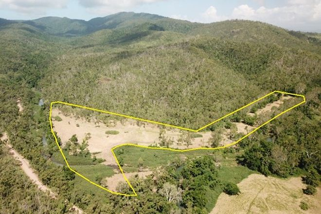 Picture of Lot 1 Saltwater Creek Road, PALM GROVE QLD 4800