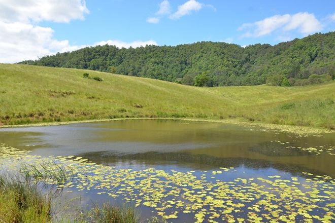 Picture of Lot 12 Aherns Road, CONONDALE QLD 4552