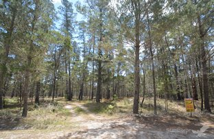 Picture of Lot 140 Blackbutt Road, Sugarloaf QLD 4380