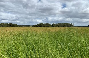 Picture of Lot 284 Brilliant Road, The Plains WA 6237