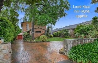 Picture of 3 Castella Street, Ivanhoe East VIC 3079