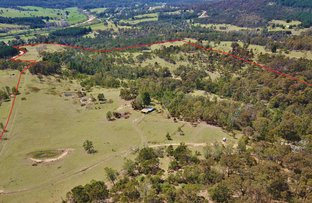 Picture of 185 Pericoe Rd, Towamba NSW 2550