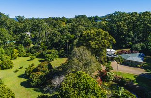 Picture of 42 Menary Rd, West Woombye QLD 4559