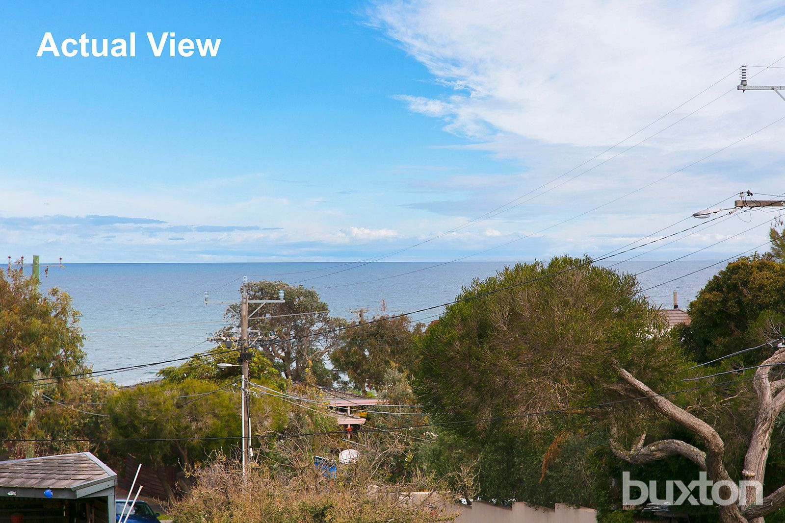 11 Wellington Avenue, Beaumaris VIC 3193, Image 1