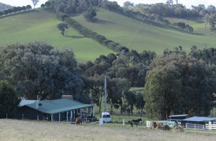 Picture of 724 Upper Lurg Rd, Upper Lurg VIC 3673