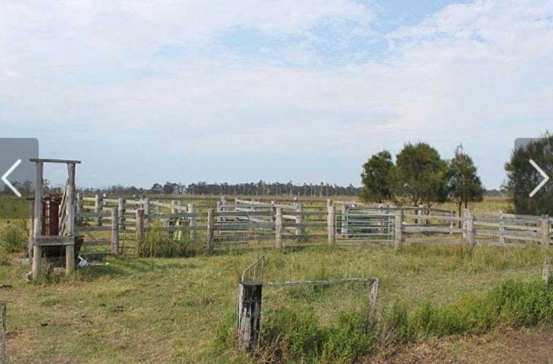 Lot 10/258 Left Bank Road, Kinchela NSW 2440, Image 2