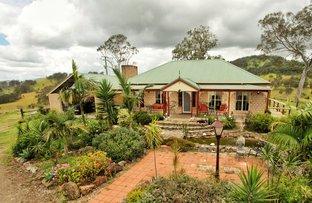 392 Mograni Creek Rd, Mograni NSW 2422