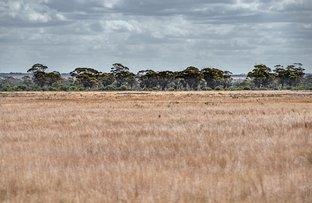 Picture of 221 Popes Hill South Road, Dandanning WA 6479