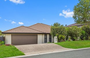 Picture of 20 Ritz Drive, Coomera QLD 4209