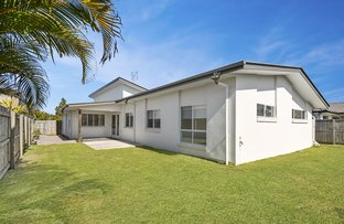 Picture of 8 Clarence Place, Sippy Downs QLD 4556