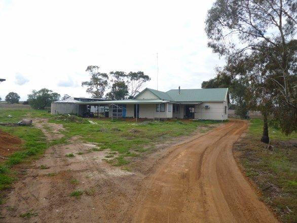 1362 Datatine Road, Nyabing WA 6341, Image 0
