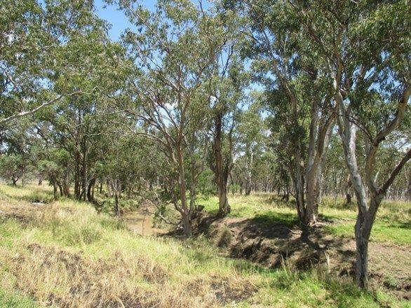 8465 CARNARVON HIGHWAY, Injune QLD 4454, Image 2