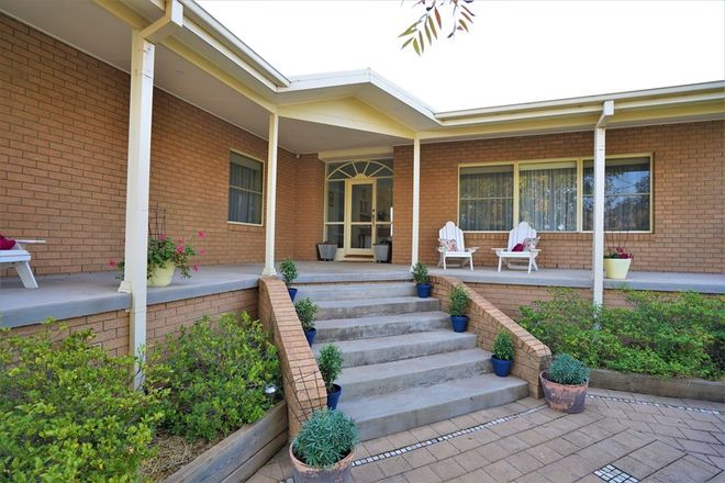 Picture of 17 Wood Road, GRIFFITH NSW 2680