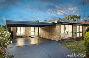 Picture of 17 Tortice Drive, Ringwood North VIC 3134