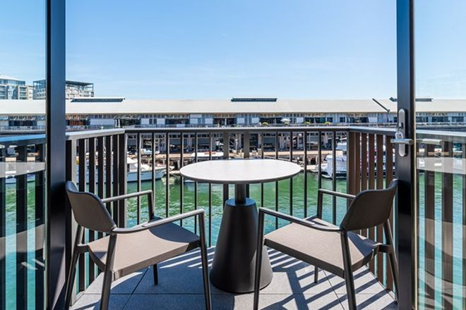 Picture of 205/8 Darling Island Road, PYRMONT NSW 2009