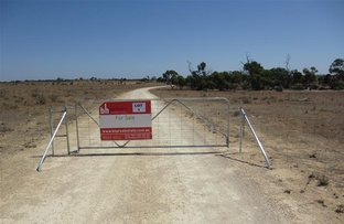 Picture of Lot 1 cnr Hunter Road and Stott Highway, Swan Reach SA 5354